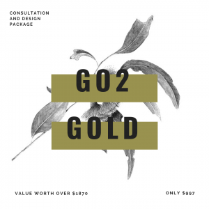 GO2 GOLD PACKAGE